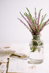 Faso con i fiori