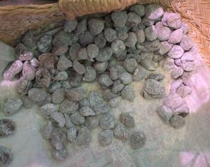Figues séchées