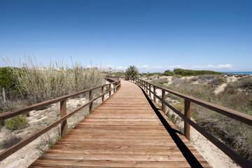 Wooden walkway over dunes