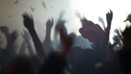 Concert crowd at live music concert, festival