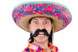 Постер, плакат: Funny mexican with sombrero hat