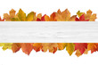 canvas print picture - Herbstliches mit Holz