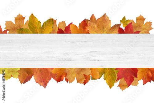 canvas print picture Herbstliches mit Holz