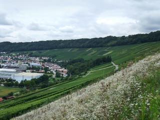 Kochertal in Hohenlohe