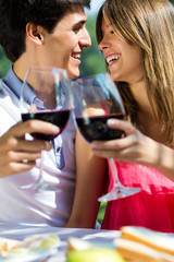 Attractive couple drinking wine on romantic picnic in countrysid