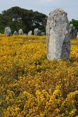 Menhirs à Carnac, Bretagne