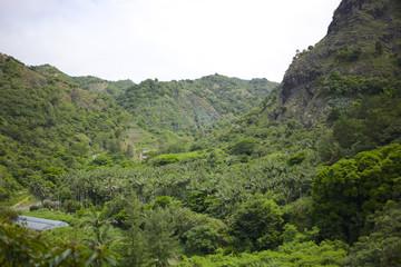 小笠原 父島の自然