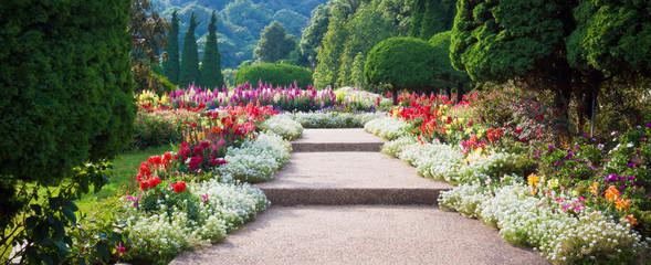 Kwiat ogród