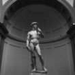 David di Michelangelo Buonarroti in Bianco e Nero - 69808582