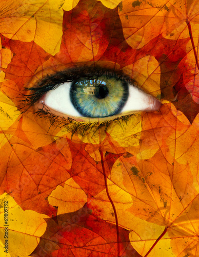 canvas print picture Autumn eye