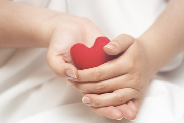 Red heart in gentle woman's hands