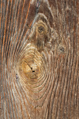 detail of old wood - background