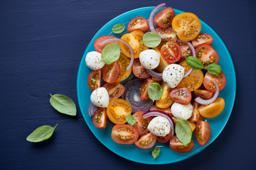 Salad with tomatoes and mozzarella over dark blue background