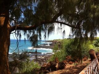 the coast of Kauai