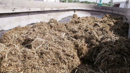 mixed fodder is produced for cows