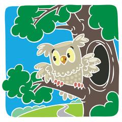 Children vector illustration of little owl