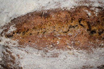 frische Kruste, Brot hausgemacht