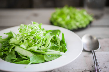 Salad with spinach,cucumber and microgreens on wooden background