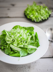 Salas with spinach,cucumber and microgreens on wooden background