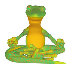Gecko meditating