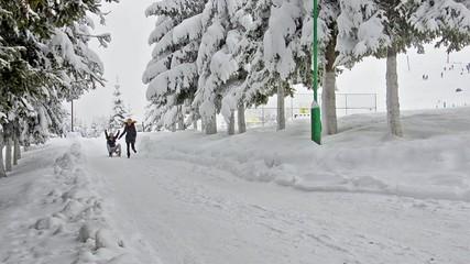 beautiful teen girls pull sledge and having fun, running