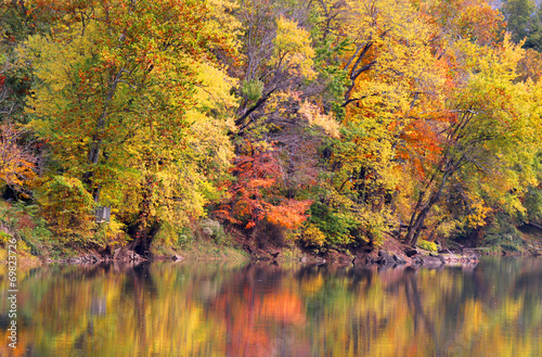 Reflections of Autumn trees