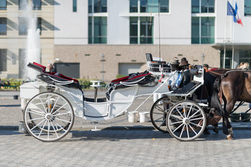 Carrozza turistica trainata da cavalli