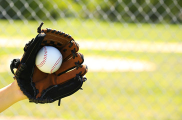Hand of Baseball Player with Glove and Ball over Field
