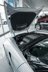 Car Dealer Showroom