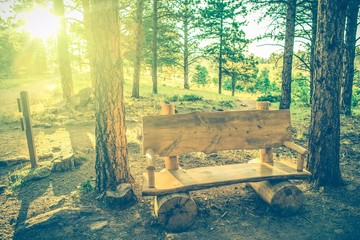Summer Wooden Bench
