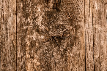 Knotted Wood Background