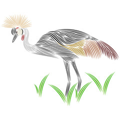 Grey crown crane