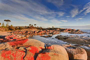 Tasmania Bay of Fires Red Rocks