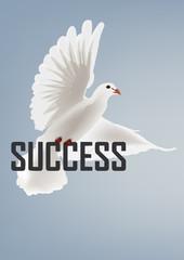 successo della pace