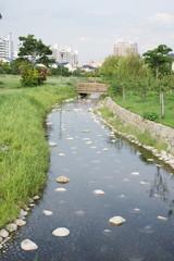 住宅街の小川