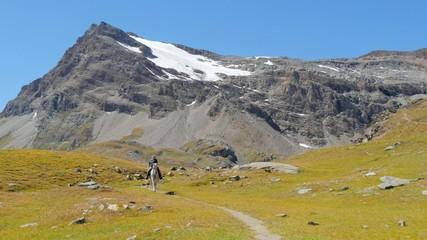 alpine landscape with horseman