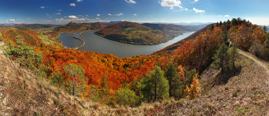 Fall Panorama with forest