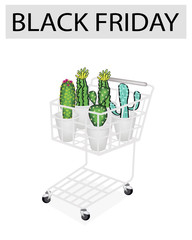 Cactus and Cactus Flowers in Black Friday Shopping Cart