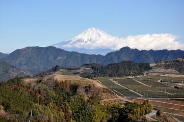 吉原からの富士山