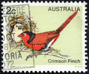 stamp printed in Australia, shows the Crimson Finch