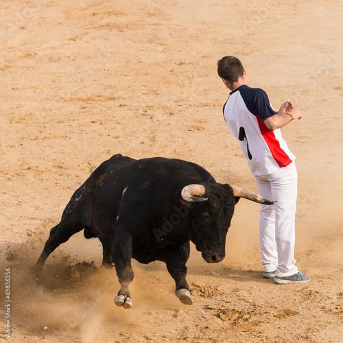 Staande foto Stierenvechten Recortes a Toros Bravos