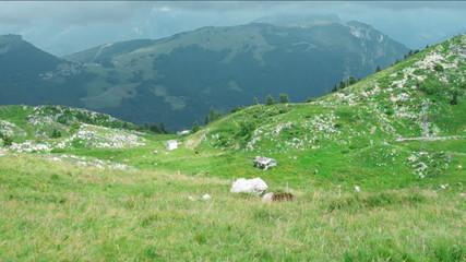 View of  Monte Baldo massif.