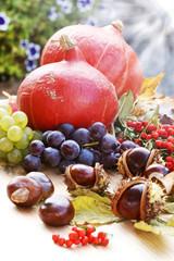 Herbstdekoration mit Kürbissen, Weintrauben, Kastanien