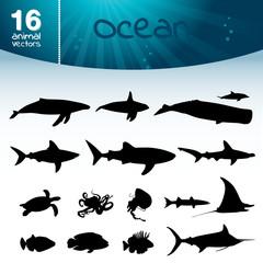 Ozean Set
