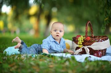 boy have a picnic