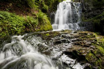 Vattenfall i skogsmiljö