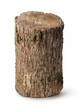 Vertical stump - 69840593
