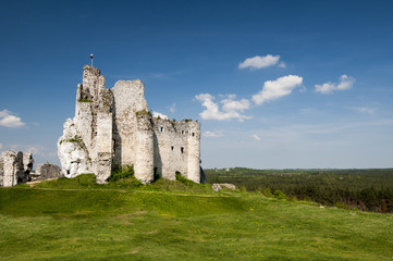 knight's castle in Mirow, Poland