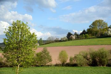Felder im Odenwald