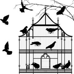 Birds and birdcage graphic